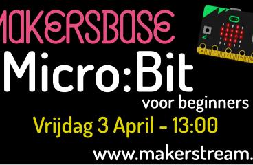 Micro:bit voor beginners